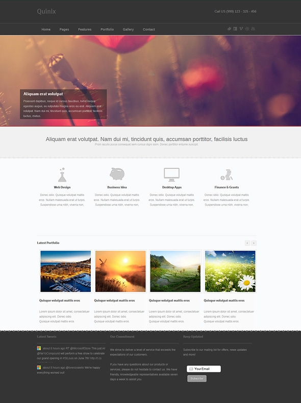 Template Image for Quinix - Responsive Website Template