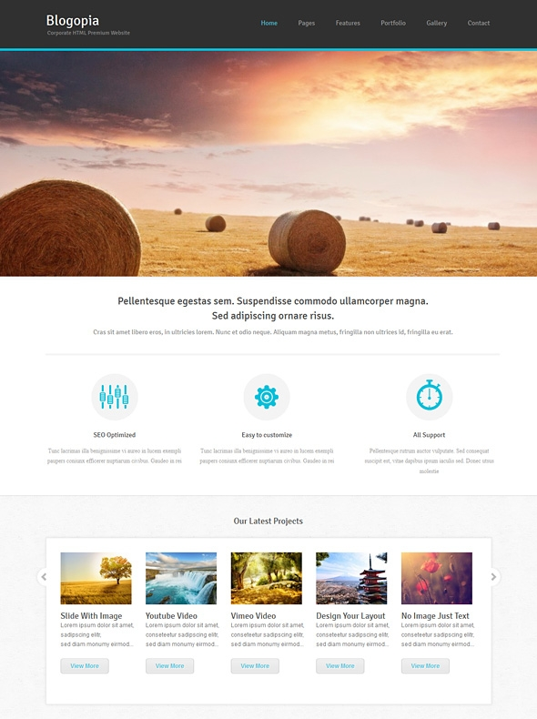 Template Image for Blogopia - Responsive Web Template