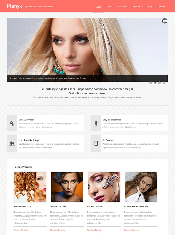 Template Image for Planyx - Responsive Website Template