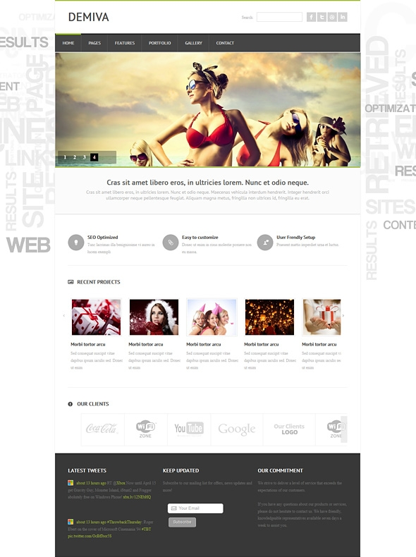 Template Image for Demiva - Responsive Website Template