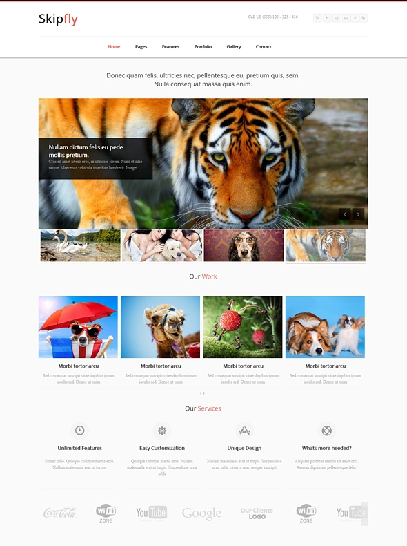 Template Image for Skipfly - Responsive Website Template