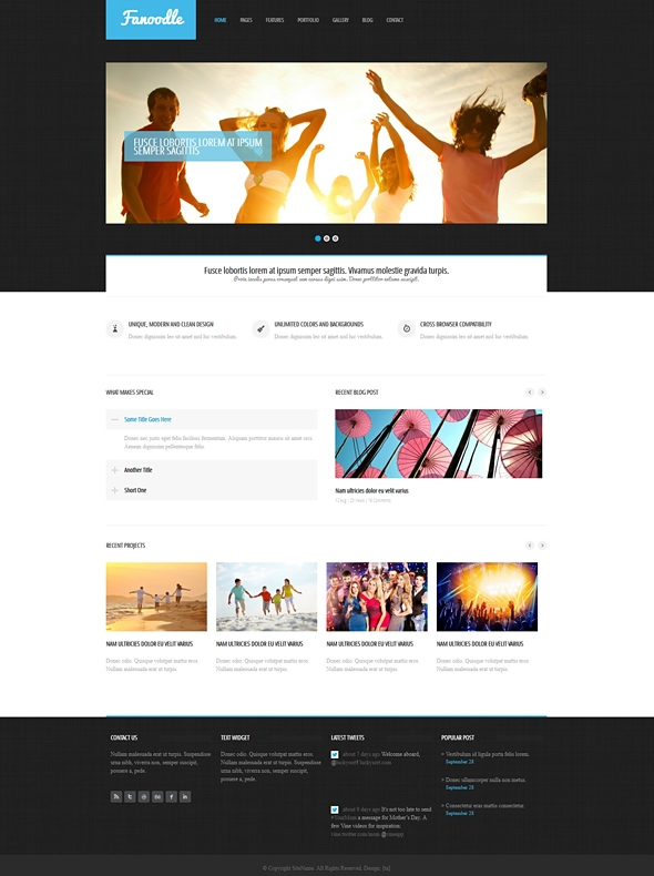 Template Image for Fanoodle - Responsive Website Template