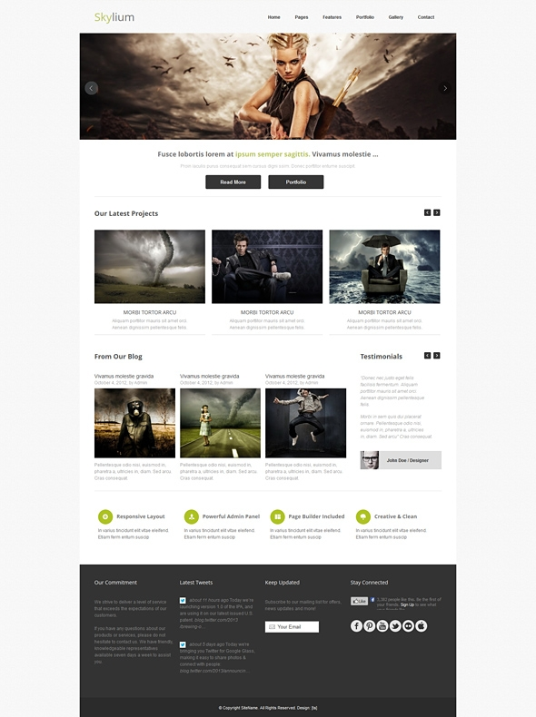 Template Image for Skylium - Responsive Web Template