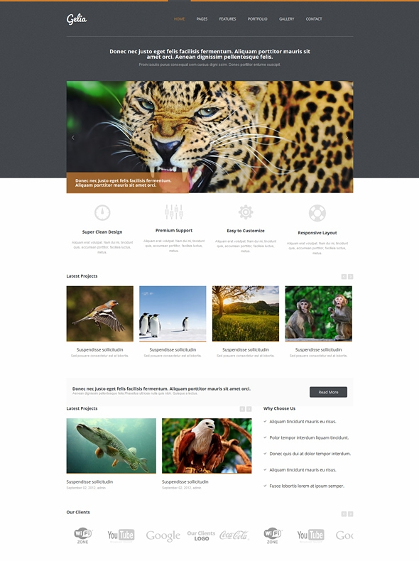 Template Image for Gelia - Responsive HTML Template
