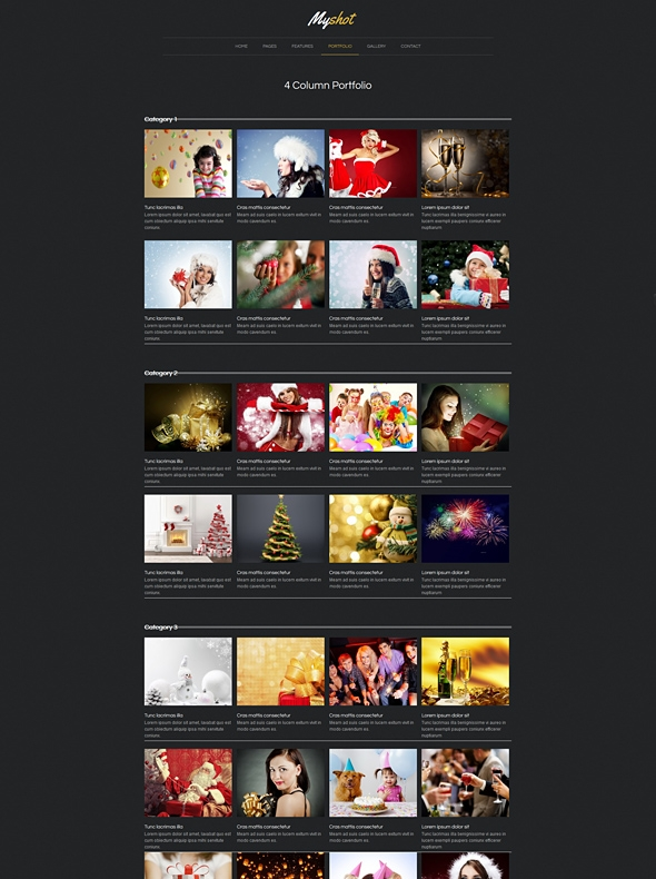 Template Image for Myshot - Responsive Website Template
